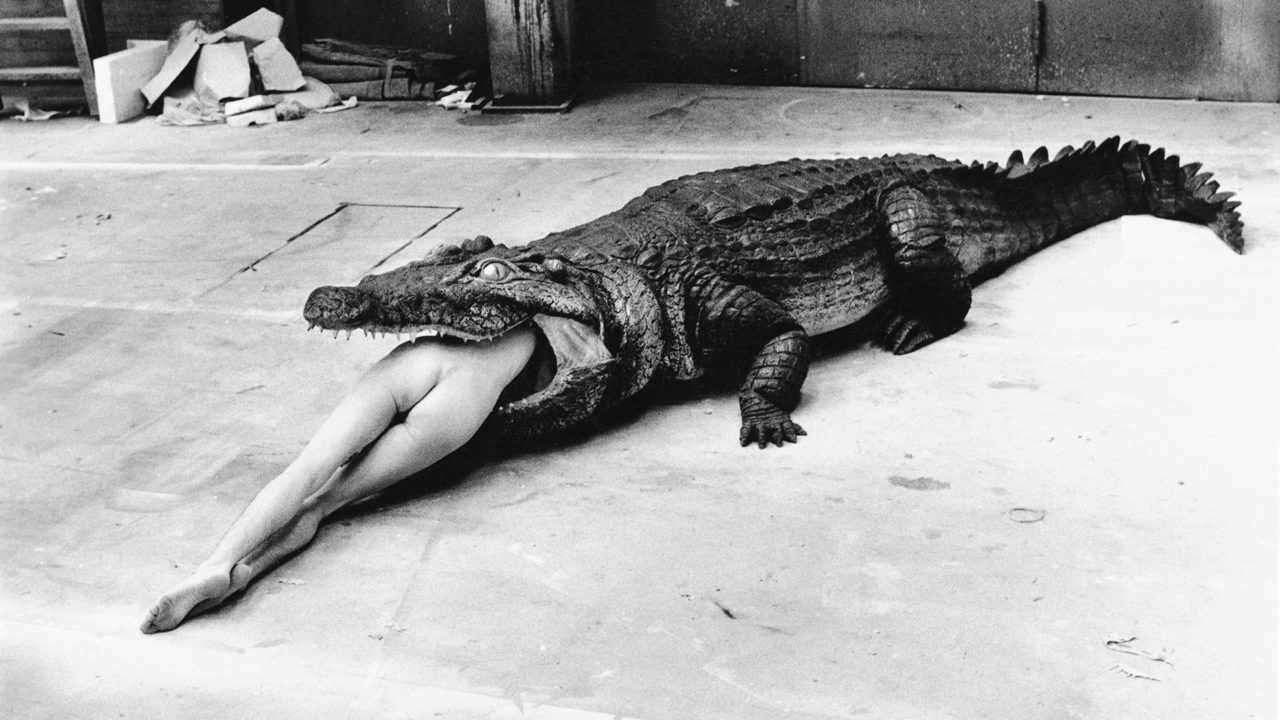 Helmut Newton – The Bad and the Beautiful